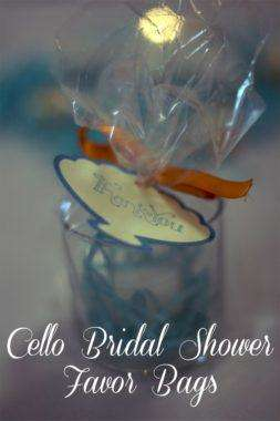 Cello Bridal Shower Favor Bags
